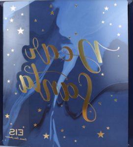 eis adventskalender premium 2019