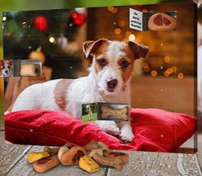 Adventskalender mit Bildern für Hunde