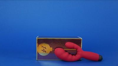 Zweiarm-Vibrator