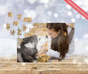 DM Puzzle Adventskalender 2020 (1)