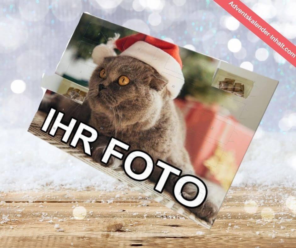 Katzen-Adventskalender mit Foto 2020 (1)
